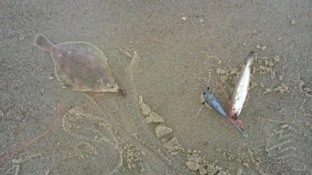 Vissen aan het Nollestrand, Joost en Richard