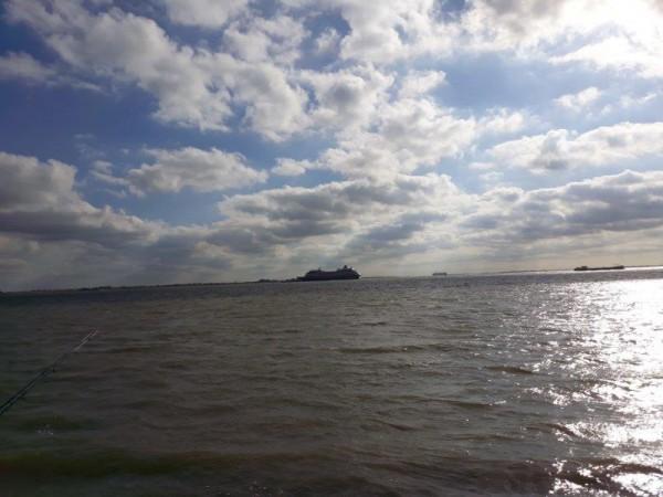 Eldert, vissen aan Domburg en Waarde