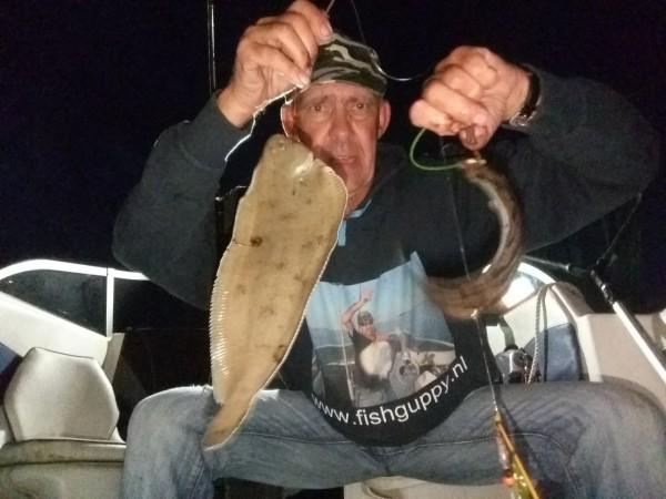 Avondje tong en haai vissen, aan de onrust
