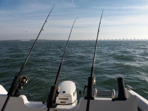 Solo bootvissen, voor de stormvloedkeerring