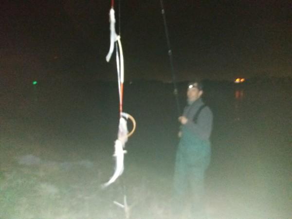 Vissen aan Rozenburg, daar kun je lachuhhh