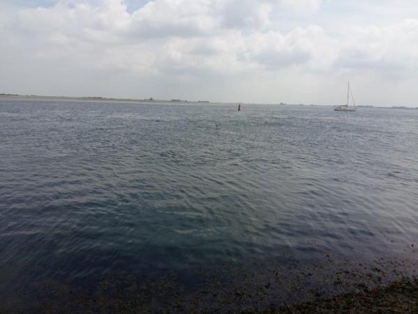 Vissen op Geep, aan st Annaland