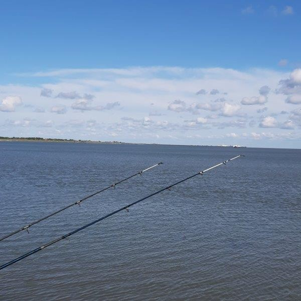 Vissen op Ameland