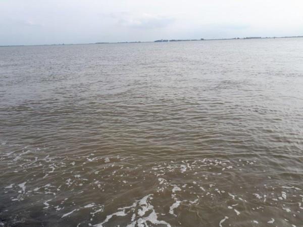 Nico, kantvissen aan Westerschelde