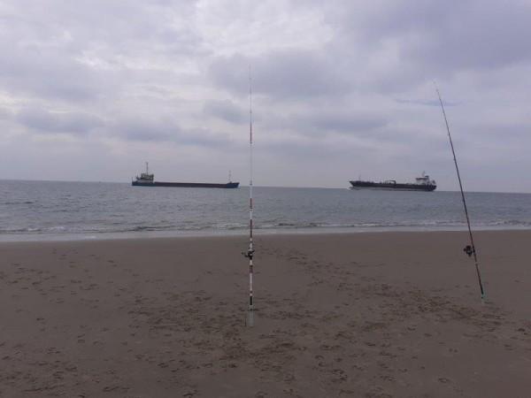 Kees, strandvissen aan Zouteland
