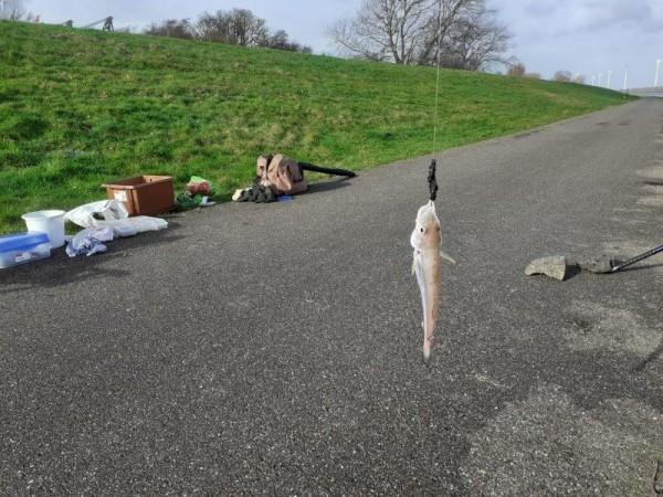 Stefan, vissen in de Waterweg