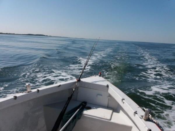 Vissen op de Oosterschelde, met boot van Dixhoorn