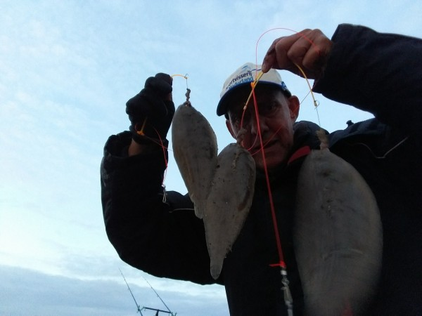 Op Tong vissen aan de Botlek