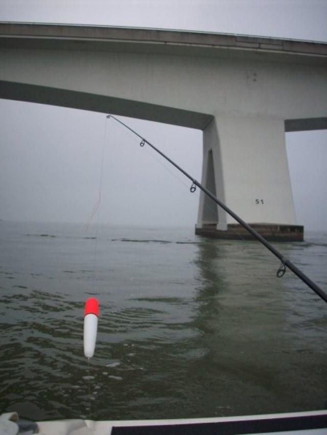 Samenraapsel van visdagen, Wim Bresseleers