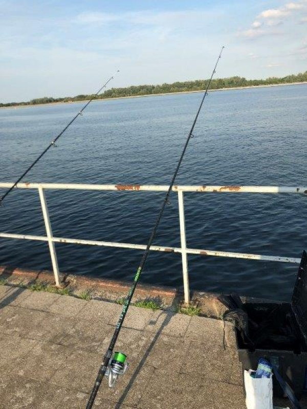 Nicky, vissen Botlek en Antwerpen
