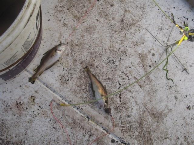 Bootvissen met ons Marian