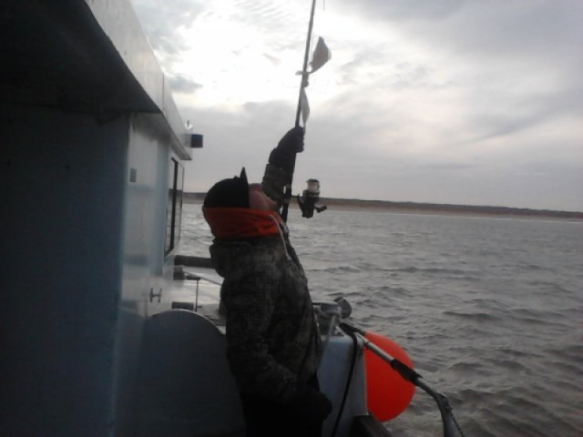 Ankervissen met Ludo, van Northseacharters