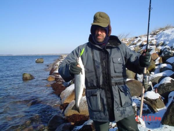 Vissen in Langeland, Denemarken