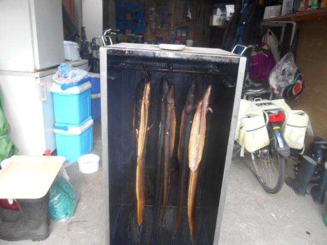 Hoe rook ik grote paling