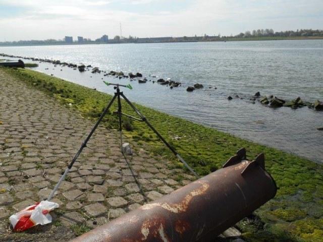Scharren meppen in de Waterweg