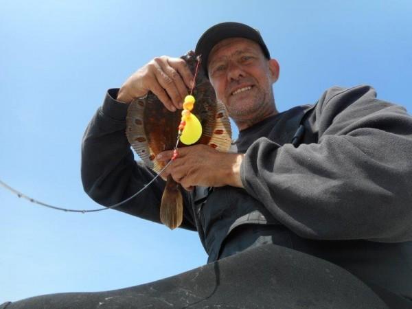 Zeevissen in Langeland, bij Haus und boot