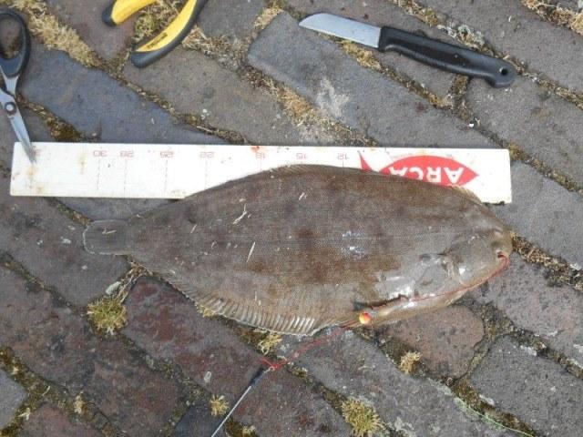 Op tong vissen bij de Chinees