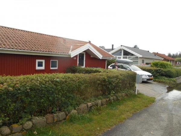 Kantvissen in Denemarken