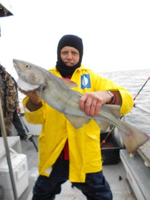 Wrakvissen ,www.northseacharters.be