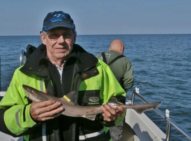 Naar de Haaien met de Dinsdagploeg