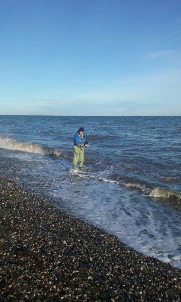 Cor, vissen op Zefo, in Jutland(Denemarken)