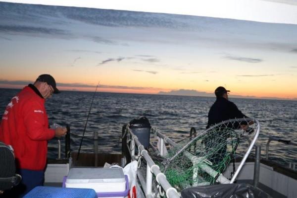 Tongvissen met northseacharters, vrijdag 24 juni