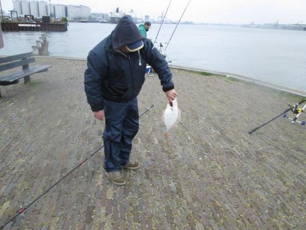 2 Limburgers, vissen in de Europoort