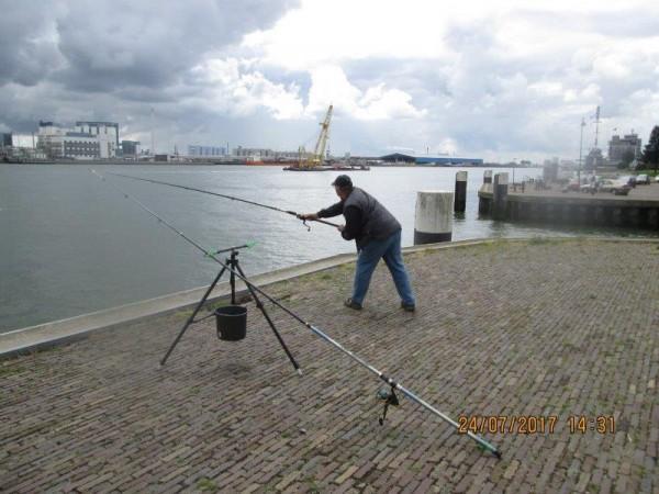 De Limburgers, vissen aan Vlaardingen