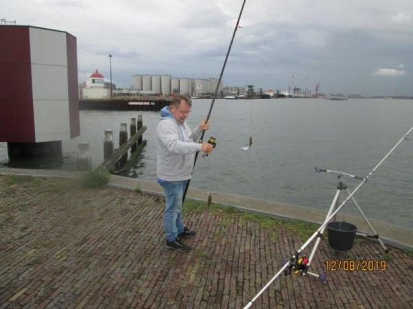 2 Limburgers, vissen op tong