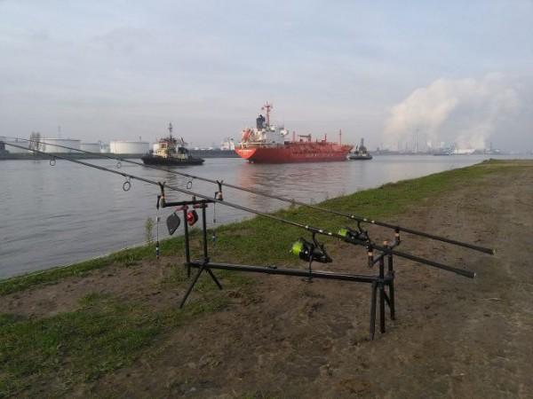 Jack Peelman, vissen Antwerpse haven