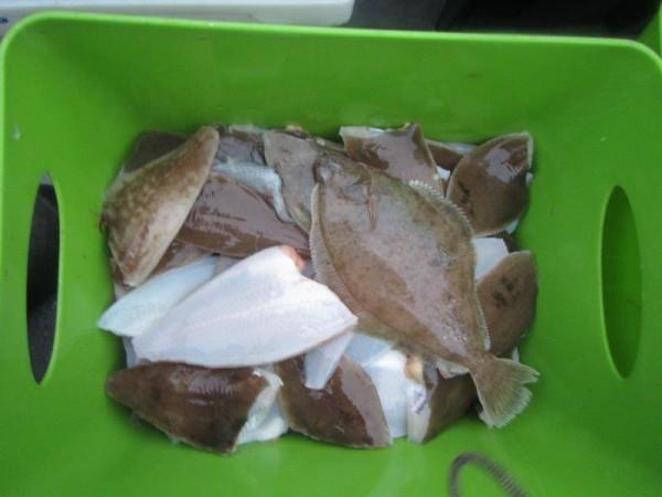 Ankervissen met De Zeearend, Alain Tulleneers