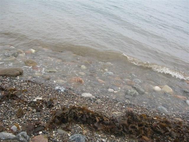 (Vis)Vakantie Jutland(Fjellerup)