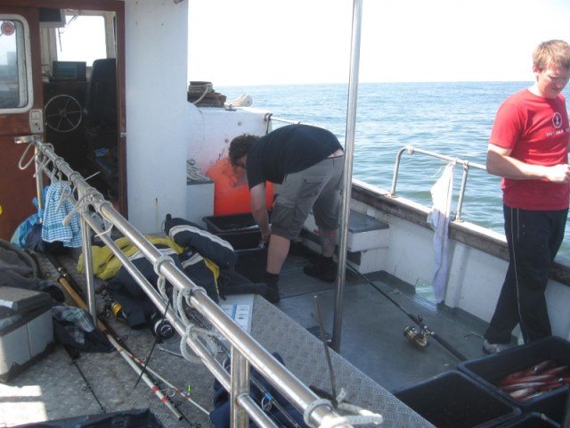 Makreelvissen met Northseacharters
