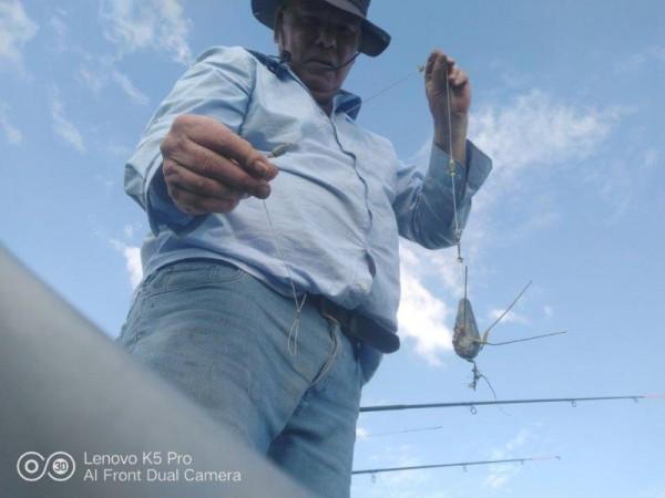 ies, vissen aan de Waterweg
