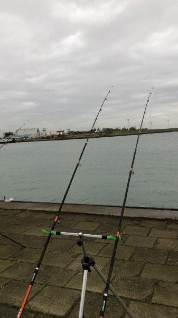 Nicky, vissen aan haven Vlissingen