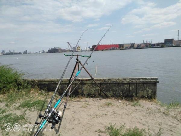 Ies, vissen aan Schiedam 2
