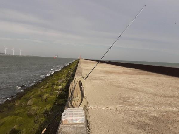 Stefan, vakantie en vissen
