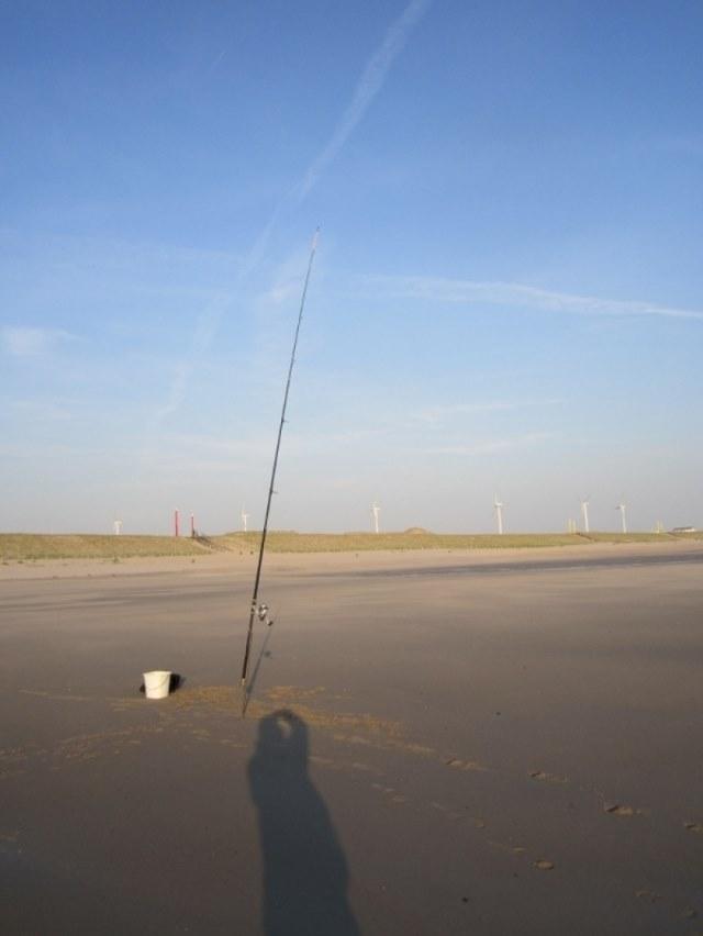 Maup aan de Maasvlakte 2